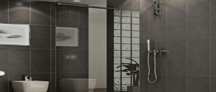 modern-walk-in-shower-with-clear-glass-divider-shower
