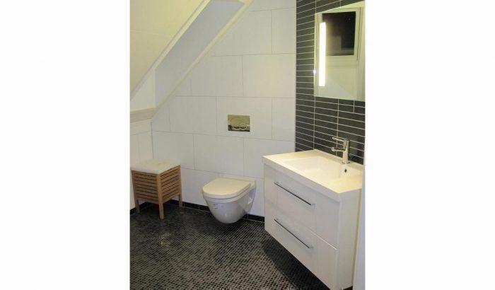 Toilet renovatie in dag veilig en comfortabel max